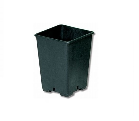 Vaso quadrato 11L-0