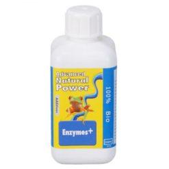 Enzymes + 1L