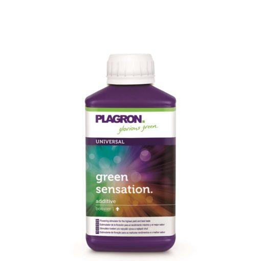 Green Sensation 500ml-0
